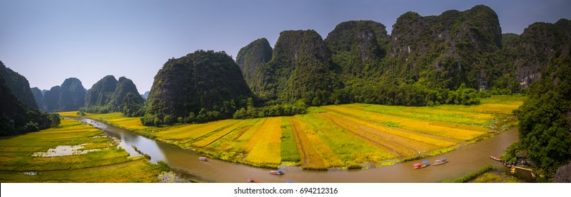 Tam Coc, Ninh Binh, Vietnam - June 02, 2017: Boat trips on Ngo Dong River, Trang An Scenic Area, Harvest Season panorama.