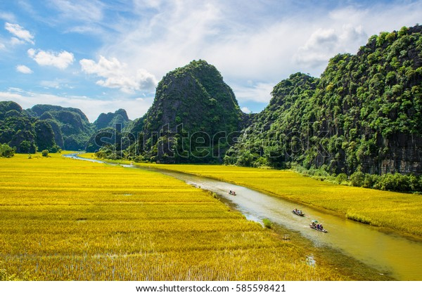 Tam Coc Ninh Binh Vietnam June Stock Photo (Edit Now) 585598421