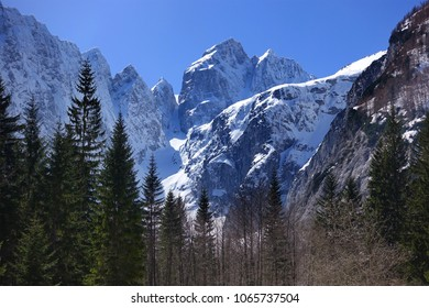 Tamar, Kranjska Gora, Slovenia. Winter scenery, Slovenian alps, Europe