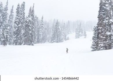 Tamarack Mountain Resort - Snowboarding in a whiteout