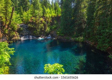 Tamolitch Falls and the Blue Pool along the McKenzie River in Oregon