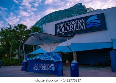 Tampa Bay, Florida. April 28, 2019 Manta Ray in The Florida Aquarium main entrance.
