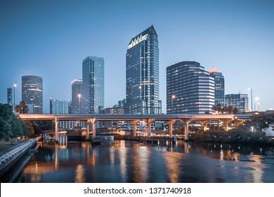 Tampa City Skyline