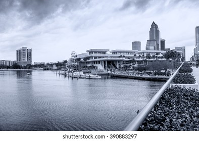 TAMPA, FL - JANUARY 15, 2016: City buildings and skyline. Tampa ranks as the fifth most popular American city, based on where people want to live.