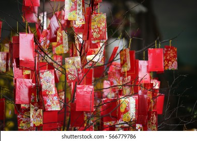 Tan Binh District, Ho Chi Minh city, Vietnam - January 28, 2017: Lucky red envelops hanging on a tree in main hall at Phat Bao Pagoda, praying for a lucky new year