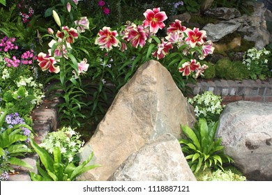 Tan rock surrounded by pink and white flowers and other stones