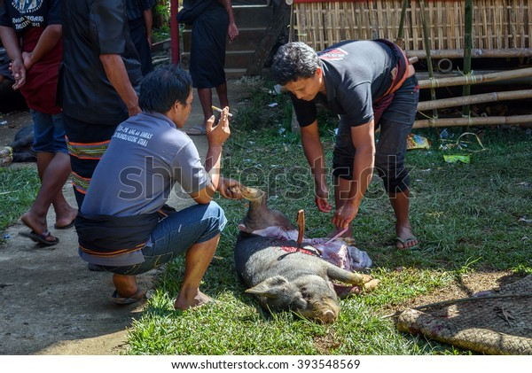 Tana Toraja Indonesia Dec 10 2015 Stock Photo (Edit Now