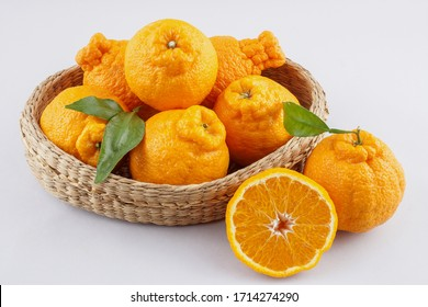 Tangerine Hallabong with white background. It is a cultivar of citrus fruits bred in Japan in 1972.