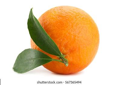 Tangerine tropical fruit isolated on white background