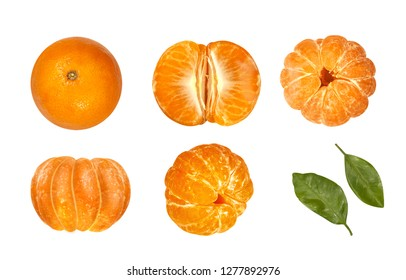 tangerines on white background top view