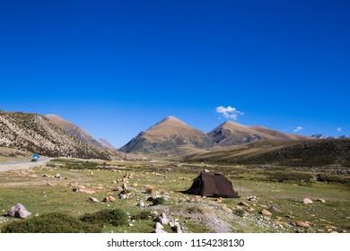 Tanggula Mountain with yaks wandering around, Tibet, China