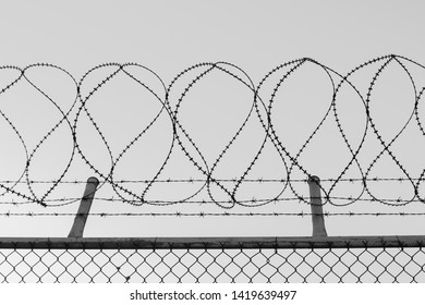 Tangled razor wire on top of a wire mesh perimeter fence, black and white
