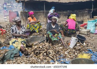 TANJI BEACH, THE GAMBIA - MAY 08, 2017: Women preparing smoked fish near the beach
