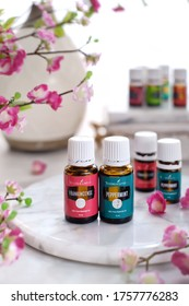 Tanjung Pinang/Indonesia - September, 3 2019 : Product of Young Living Essential Oils. Favorite oils for diffuse. Bright blurry background. Selective focus.