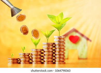 Tank of coin pouring drop to a stack with plant growing on the top and wooden house put on the desk in the office, Business investment or loan for real estate concept.