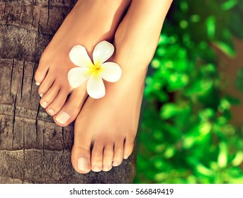 Tanned well-groomed feet amid tropical turquoise sea . Pedicure and foot Spa .Perfect clean female feet    . Spa ,scrub and foot care .