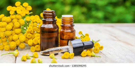 tansy medicinal extract, tincture, decoction, oil, in a small bottle nature