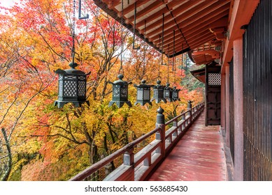 Tanzan Shrine in autumn, Nara Prefecture, Japan