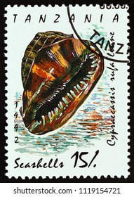 "TANZANIA - CIRCA 1992: A stamp printed in Tanzania from the ""Shells"" issue shows Bull-mouth helmet (Cypraecassi rufa), circa 1992."