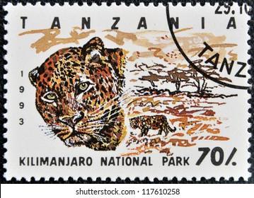 TANZANIA - CIRCA 1993: Stamp printed in Tanzania dedicated to Kilimanjaro national park, shows leopard, circa 1993