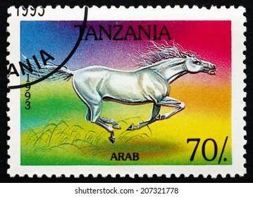 TANZANIA - CIRCA 1993: a stamp printed in Tanzania shows Arab Horse, circa 1993