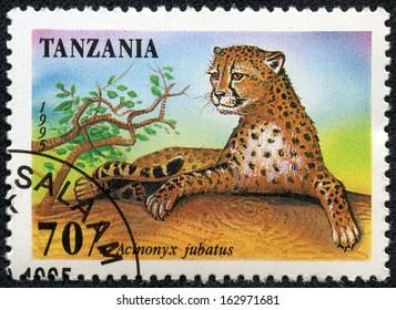 "TANZANIA - CIRCA 1995: stamp printed in Tanzania shows an African animal - Leopard with the inscription ""Acinonyx Jubatus"", circa 1995"