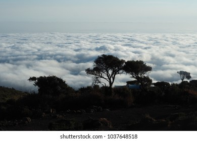 Tanzania, Kilimanjaro National Park. Morning view to valley covered with clouds under feets.
