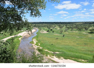 Tanzania Serengeti National park