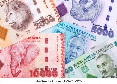 Tanzanian money, a business background