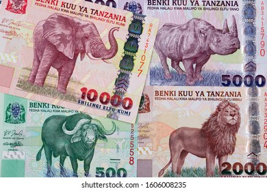 Tanzanian shilling a business background