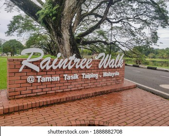 Taping , Malaysia . 4th January 2021 . Raintree walk near The Taiping Lake Gardensis the first public garden established during the British rule in Malaysia.