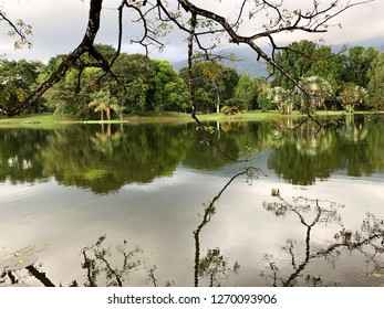 Taping Perak , Malaysia - December 30 ,2018 : Evening scenery at Taping Lake Garden in Perak , Malaysia.Taiping lake garden is one of attractions in Perak Malaysia with a nice landscapes.