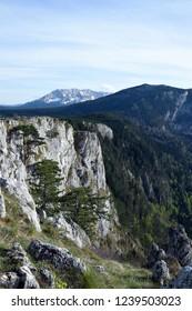 Tara Canyon landscape near Zabljak. Tara River, Durmitor, Montenegro.