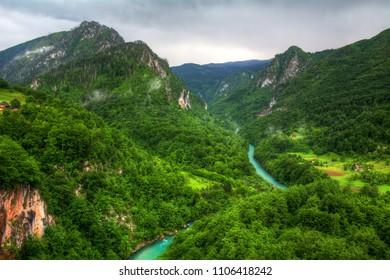 Tara River Canyon in Durmitor National Park, Montenegro