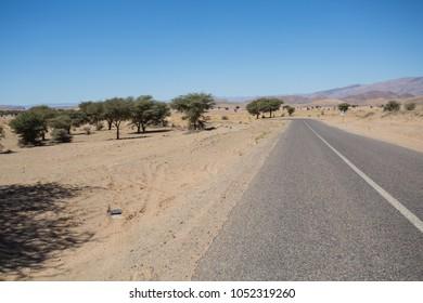Tarmac road in a blue sunny day in Sahara desert. Morocco.