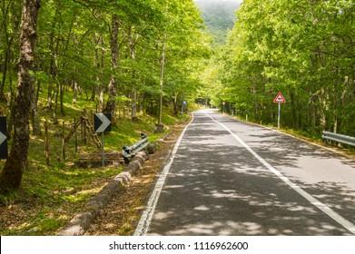 Tarmac road in the Nebrodi Park in northern Sicily