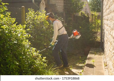 Tarn, France - May 2020 - In a cloud of dust, an Asian maintenance officer operates a petrol brush cutter he carries by means of a harness to cut some thickets among bushes planted against a fence