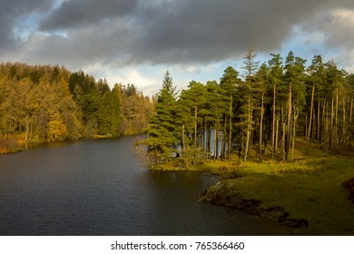 Tarn Hows in the Lake District Cumbria England during Autum