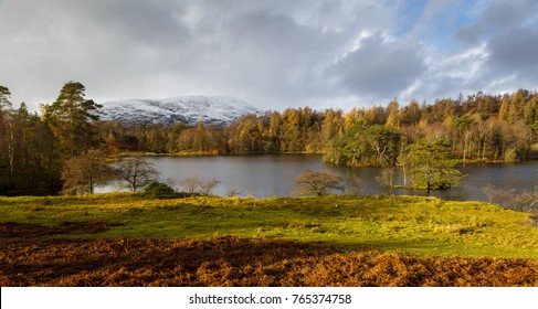 Tarn Hows in the lake district cumbria in Autumn.