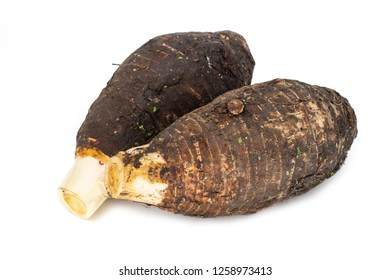 Taro on white background, close up of root vegetable