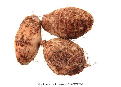 taro root isolated on the white background