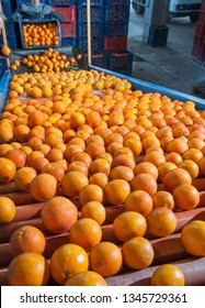 Tarocco oranges in an automatic roll carriage after the manual loading