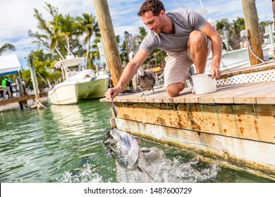 Tarpon fish feeding in the keys, Florida, Summer travel lifestyle tourism. American man having fun at leisure activity in Islamorada, USA.