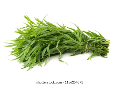 Tarragon leaves ( Artemisia dracunculus ) isolated on white background