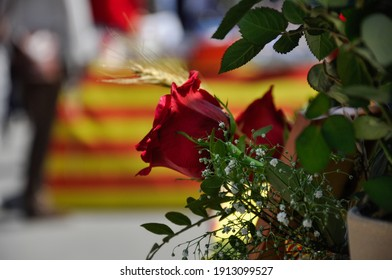 Tarragona, Spain - April 23, 2014: Roses to celebrate Sant Jordi day, the day of the book and the rose in Catalonia.
