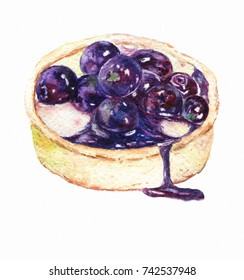 Tart with  blueberry. Watercolor illustration