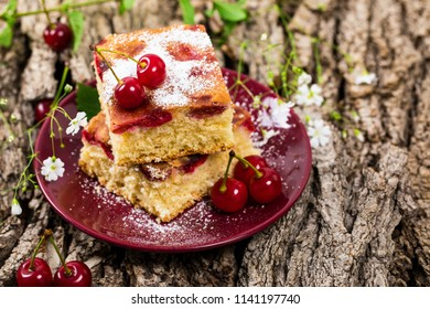 Tart Cherry Cake with Powdered Sugar. Selective focus.
