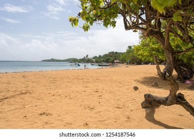 Tartane, France - 23 July 2017: Tartane beach, Presqu'ile de la Caravelle, Martinique