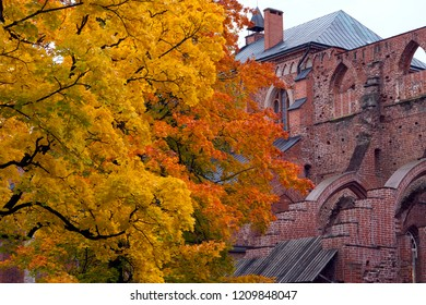 Tartu Cathedral (from 13th century)  in autumn,  Estonia.