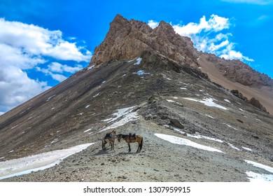 Tash Rabat Caravanserai Landscape with Snow Capped At Bashy Too Mountain Range Peak and Horses